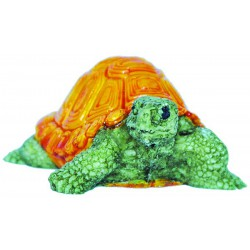 Küçük Kaplumbağa