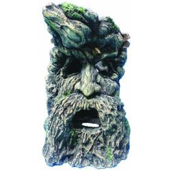 Ağaç Adam