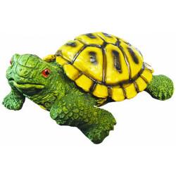 Orta Boy Kaplumbağa