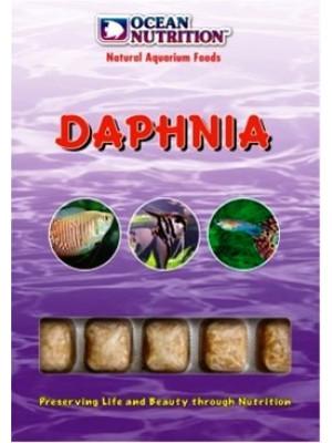 Daphnia