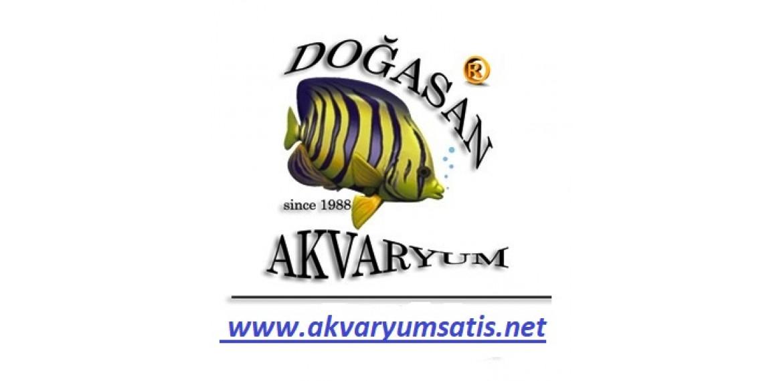 www.akvaryumsatis.net