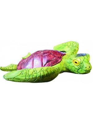 Rotifish Turtles 30Gr